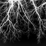 Blut – Lunge –Leben VII