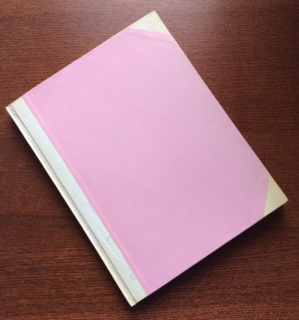 Mein Tagebuch I - Es ist rosa und es stehen dumme Dinge darin. Und hätte eigentlich werden sollen, wie ein Tagebuch von Max Frisch.