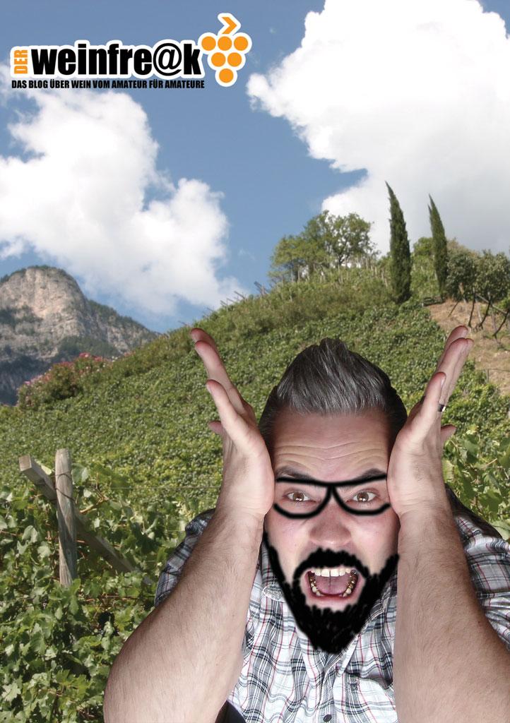 Der Weinfreak erklärt anderen Amateuren Wein