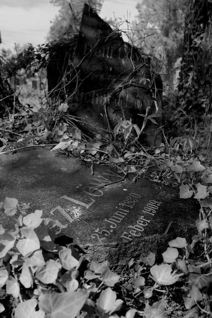 Erinnerter Tod IV